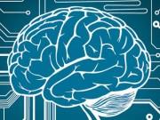 cerebro multitasking