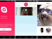 Skype_Qik