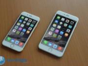 iPhone 6 e iPhone 6 Plus (2)
