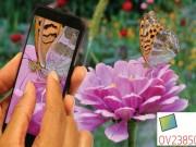 OmniVision-OV23850_Image-sensor