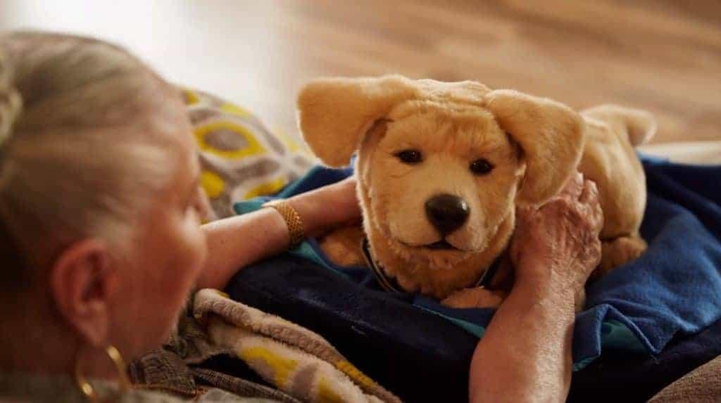 Labrador dog presented at CES