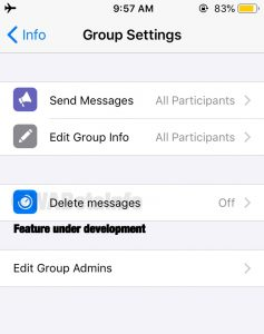 Message sent with time will be available soon on WhatsApp